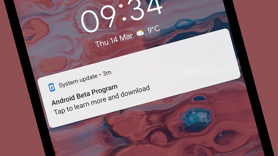 - android q gizmodo 970x546 - O que esperamos da Google I/O 2019, que começa nesta terça-feira