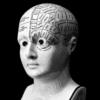 Ilustração do busto de um boneco cheio de divisões no cérebro