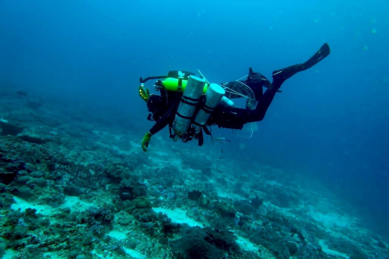 Mergulhando nas águas crepusculares do leste da Tanzânia.