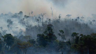Floresta amazônica em chama