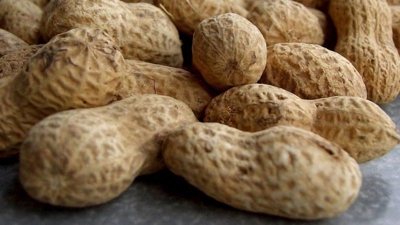 EUA devem aprovar droga contra alergia a amendoim, mas eficácia é controversa