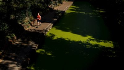 Homem correndo em jardim