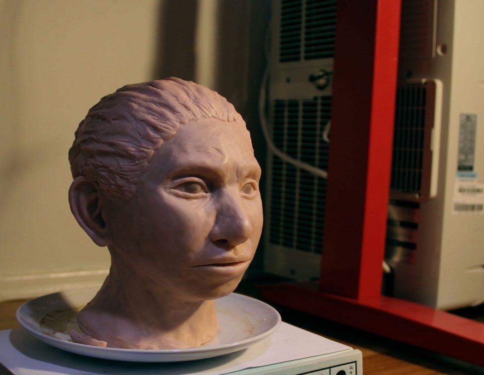 Modelo 3D do indivíduo denisovano reconstruído