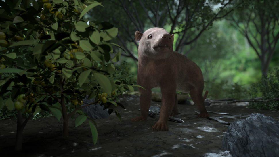 ReconstruçãoartísticadeCarsioptychus coarctatus, um mamífero herbívoro que viveu cerca de 300.000 anos após a extinção em massa que destruiu osdinossaurosnão aviário