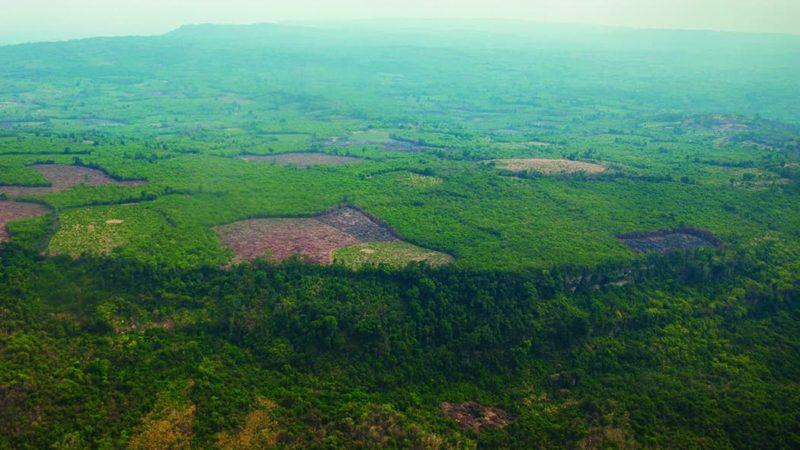Escaneamentos aéreos a laser revelam a capital oculta do Império Khmer