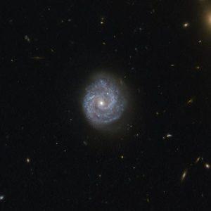 Ondas gravitacionais podem ajudar a encontrar tipos de buracos negros nunca antes observados - Gizmodo Brasil