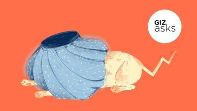 Cachorro agachado com dor de cabeça