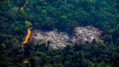 Desmatamento na Amazônia em agosto de 2019.