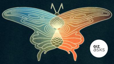 Ilustração de uma borboleta com uma asa de cada cor