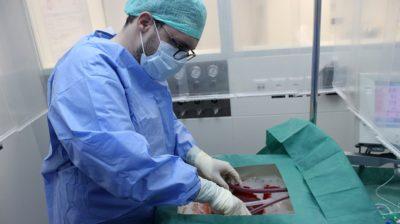 Cirurgião ligando um fígado à máquina de perfusão