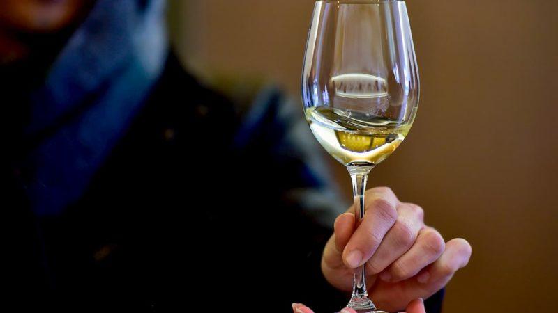 Mão segurando uma taça de vinho