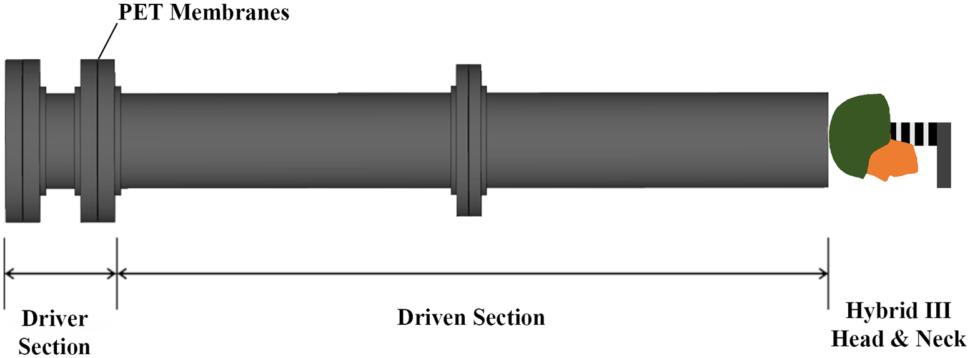 Schematic showing the shock tube setup. Image: J. O. Eynde et al., 2020/PLOS One