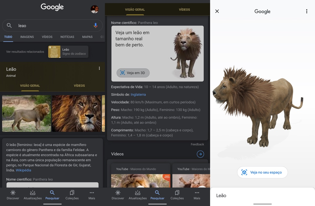 Leão 3D em realidade aumentada na busca do Google