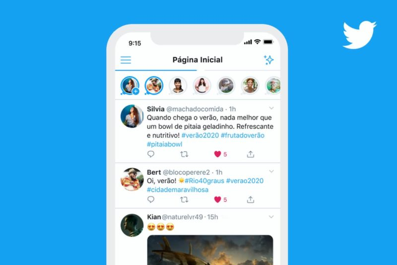 Interface do Twitter Fleet na página inicial