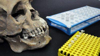 Um crânio analisado no novo estudo, juntamente com tubos para testes genéticos e isotópicos.