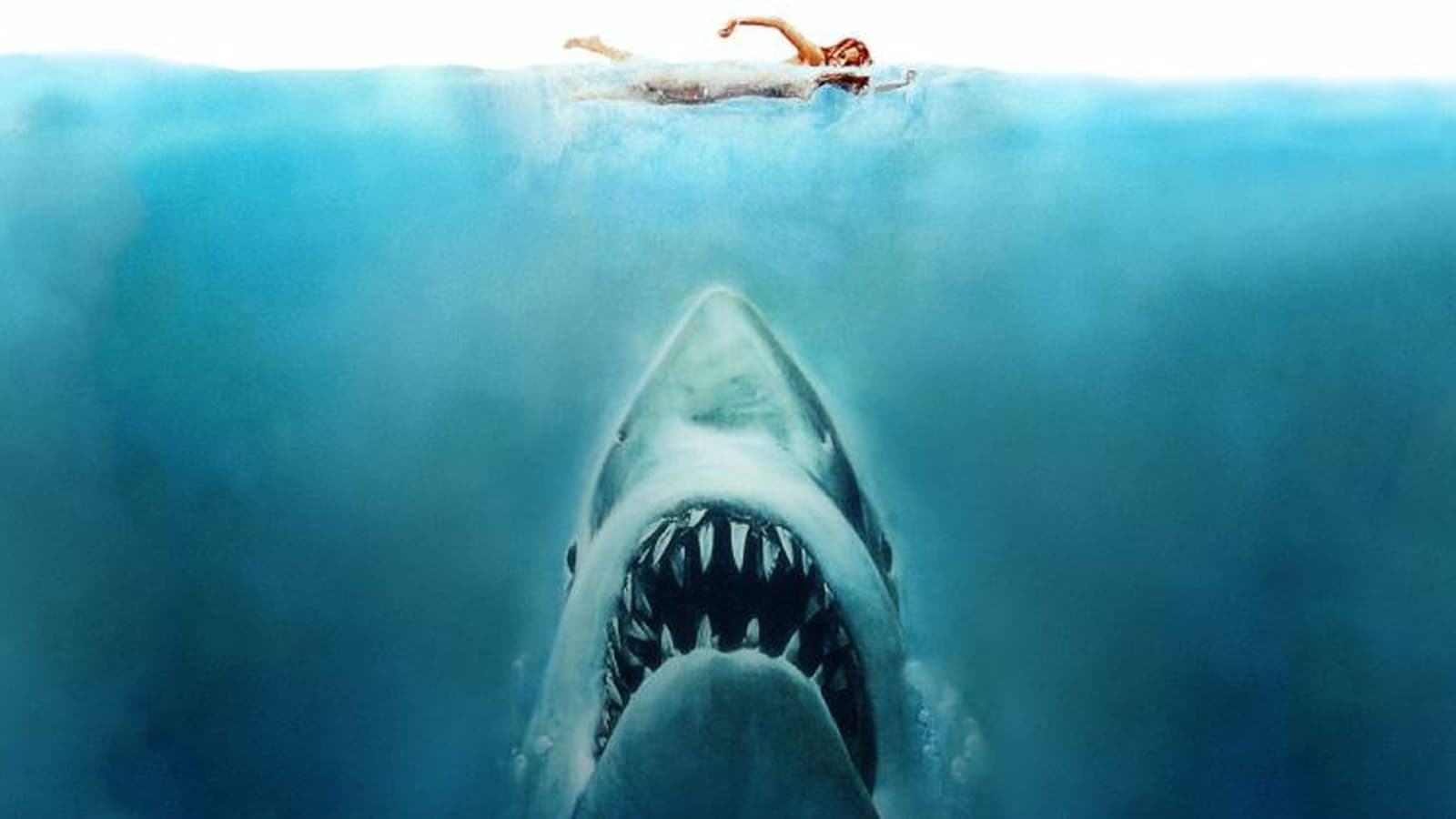 Filme Tubarão