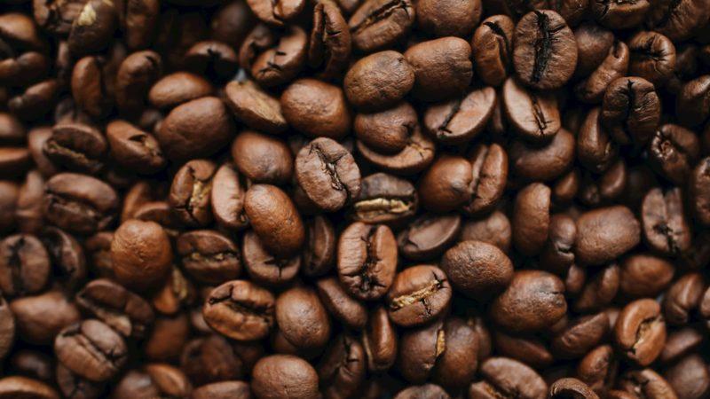 Grãos de café torrado