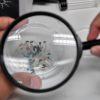 Partículas de microplástico vistas com uma lupa. Crédito: Getty