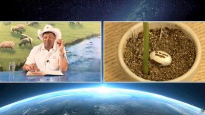 Pastor Valdemiro e semente de feijão