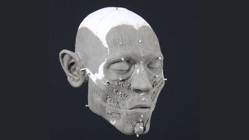 Reconstrução 3D do rosto do crânio encontrado na Suécia. Crédito: Oscar Nilsson