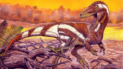 Representação artística do Aratasaurus museunacionali
