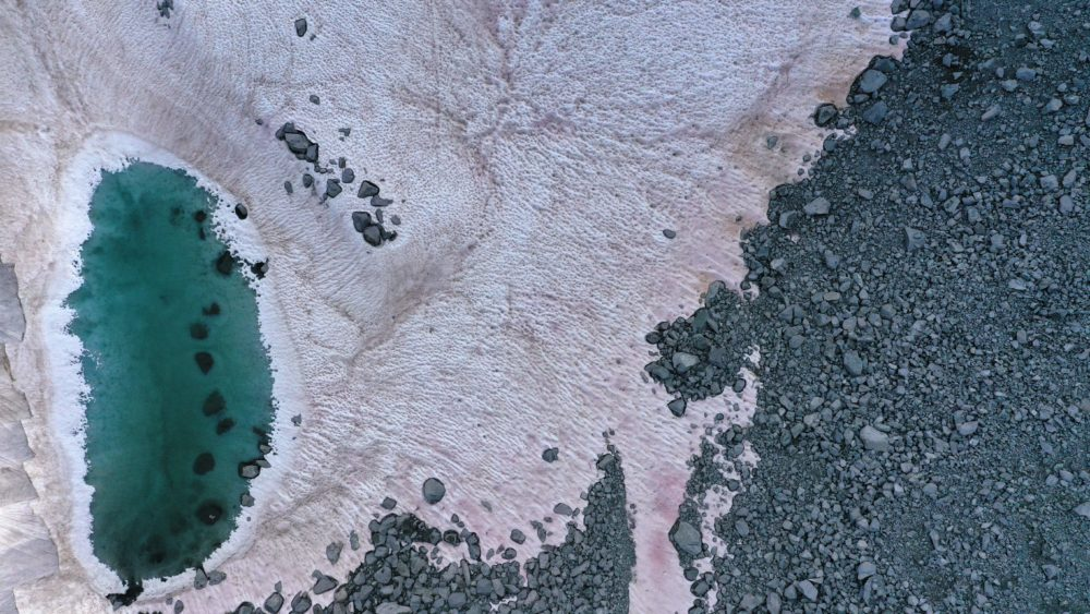 Neve rosa nos Alpes italianos é um sinal fofo da catástrofe ambiental