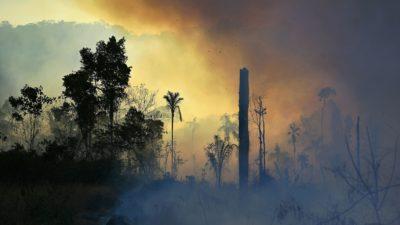 Novos recordes de incêndios na Amazônia. Crédito: Carl De Souza (Getty Images)