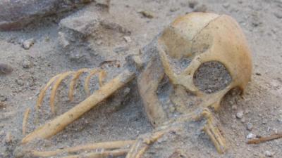 Esqueleto de macaco achado em cemitério de animais de estimação em Berenice. Crédito: Marta Osypińska/Institute of Archaeology and Ethnology of the Polish Academy of Sciences
