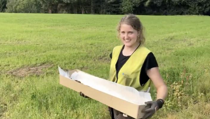 Arqueólogos encontram espada Viking. Crédito: UNCT