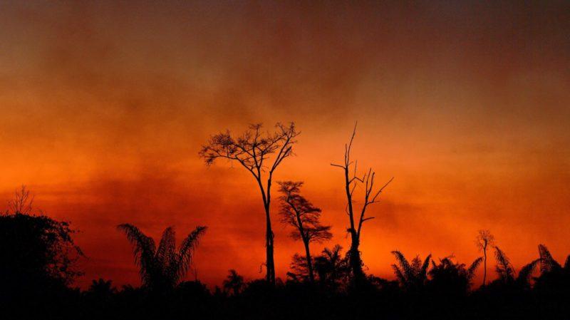 Fumaça em área queimada na terra do Parque do Xingú, no Estado do Mato Grosso, na bacia amazônica, em 6 de agosto de 2020. Crédito: Carl De Souza/Getty Images