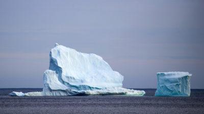 Plataforma de gelo flutuando próxima à ilha de Terra-Nova. Crédito: Drew Angerer (Getty Images)