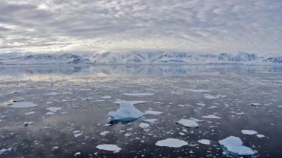 Derretimento do gelo na Antártica, em novembro de 2019. Crédito: Johan Ordonez (Getty Images)