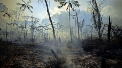 Área de floresta amazônica no Pará foi queimada. Crédito: Carl de Souza/Getty Images
