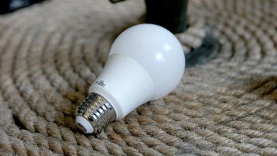 Lâmpadas inteligentes. Imagem: Sam Rutherford (Gizmodo)