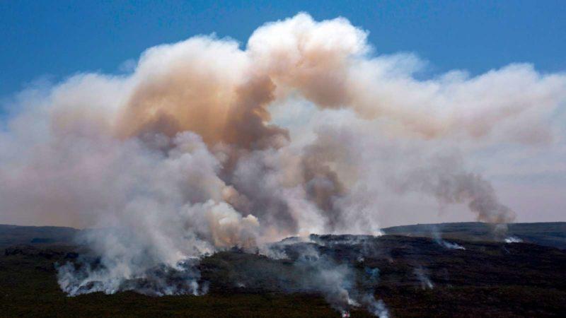 Incêndio em florestas. Imagem: Mateus Morbuck (Getty Images)