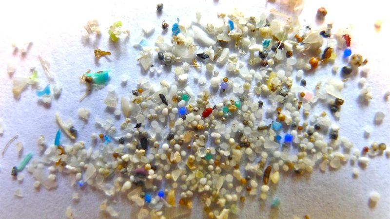 Microplástico. Crédito: Oregon State University