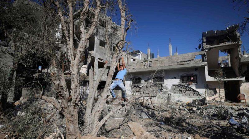 Palestina destruída