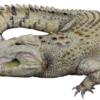 Imagem conceitual do extinto crocodilo Baru da Austrália pré-histórica.